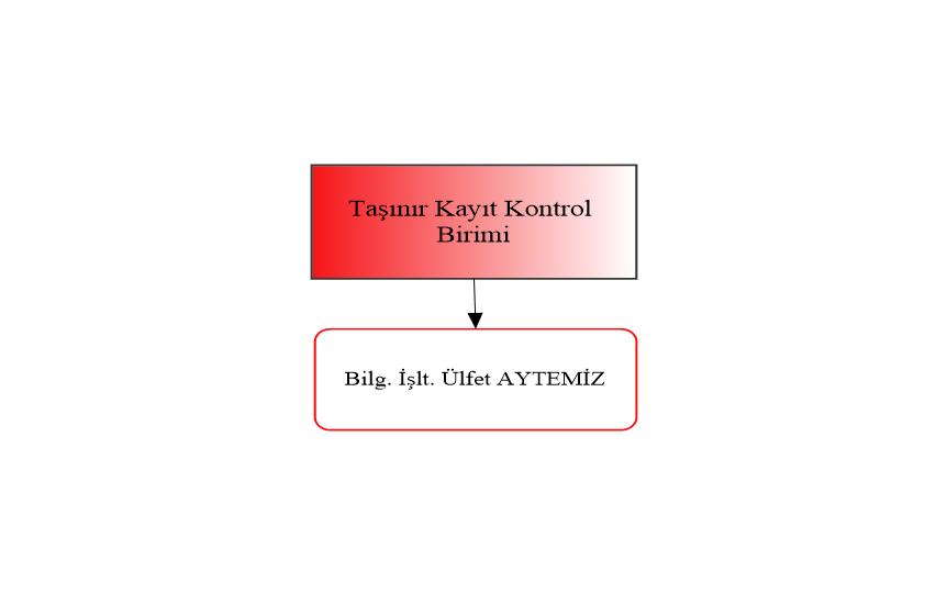Taşınır Kayıt Kontrol Birimi Organizasyon Şeması