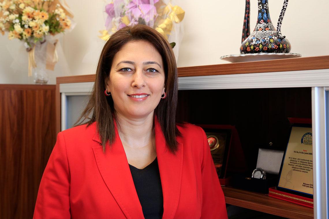 Prof. Dr. Ebru Çubuk Demiralay